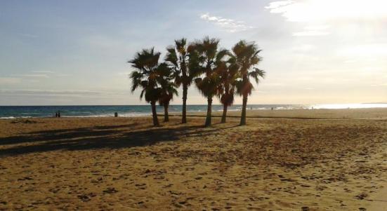 playa-coma-ruga-vendrell-bandera-azul